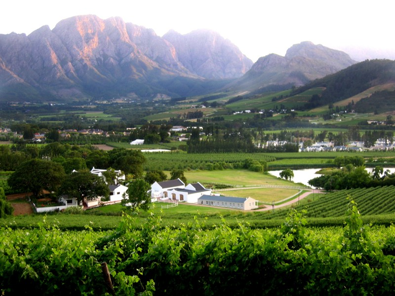 Franschhoek Winelands View